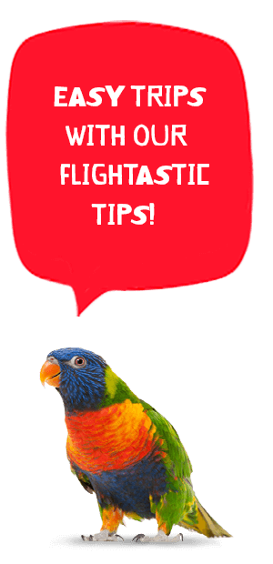 flight tips