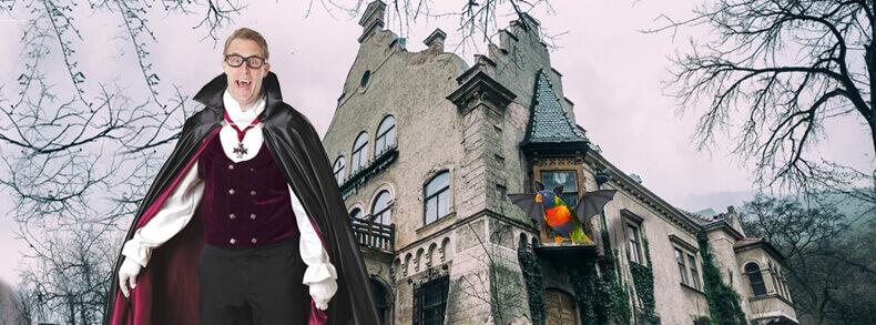 halloween horror spooky holidays