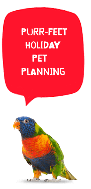 holiday pet planning